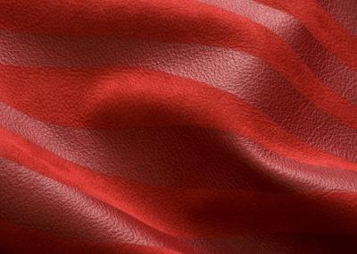 pelle rossa zebrano